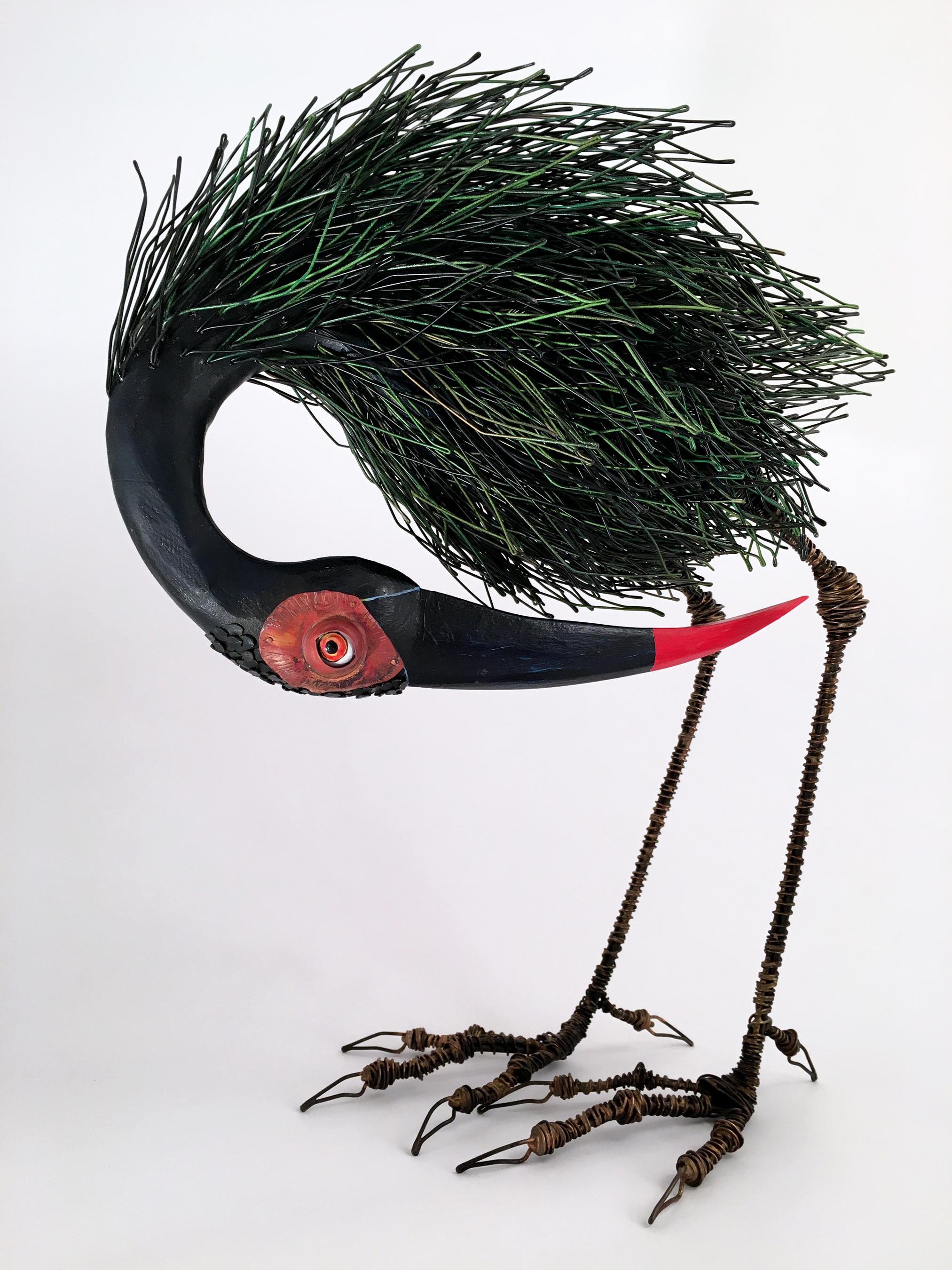 Tom Hill: Birds | Velvet da Vinci